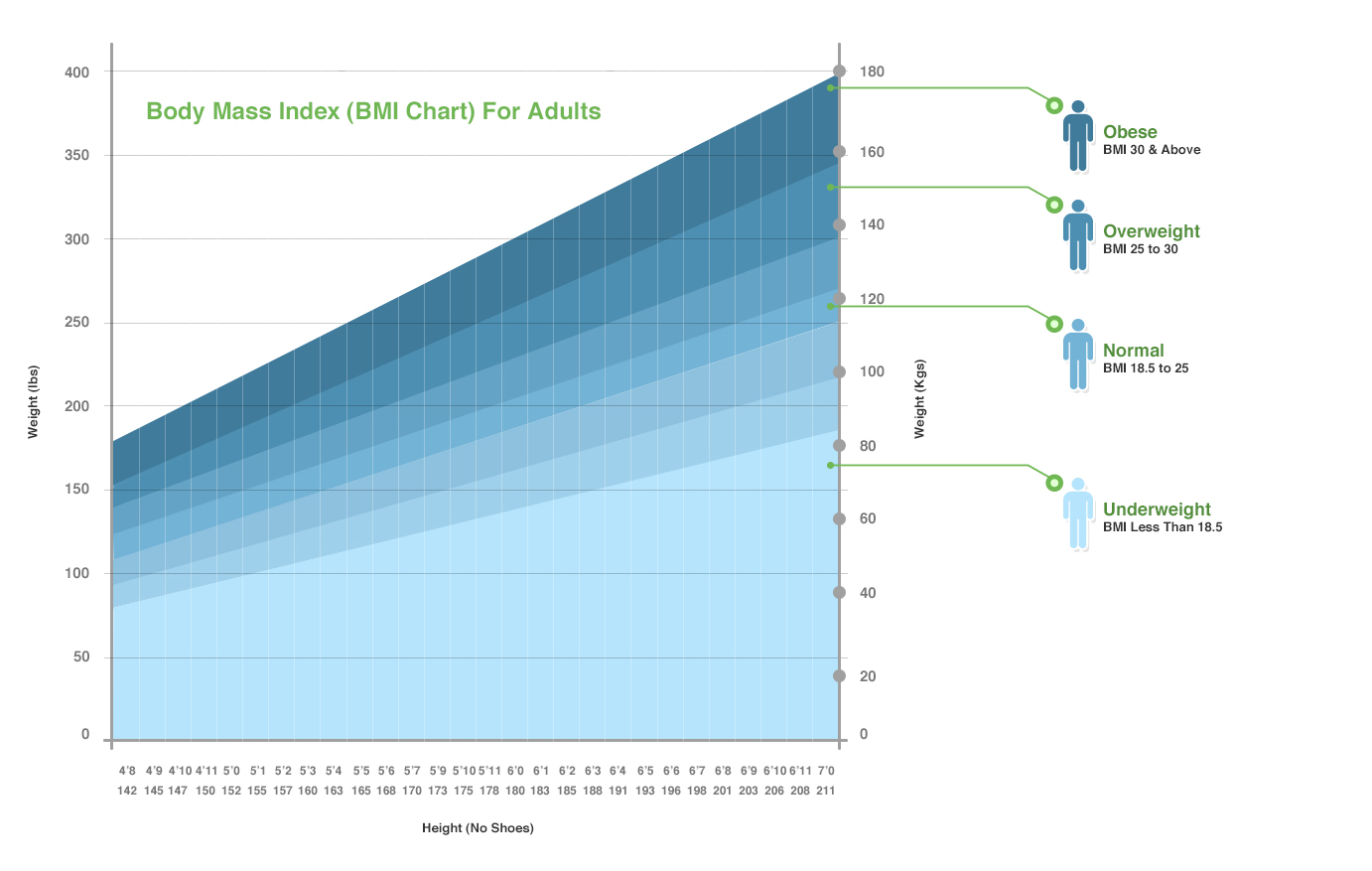 Body Mass Index [BMI] Chart for Adults